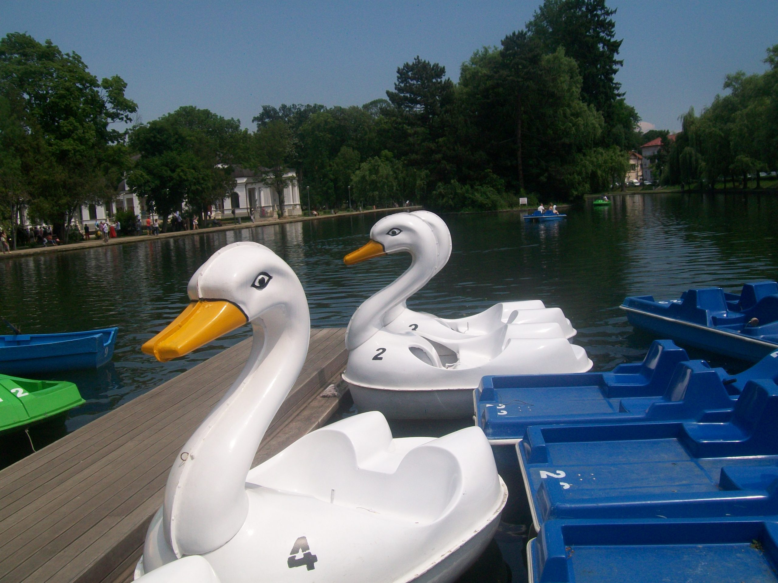 Cluj Central Park – Chios Lake
