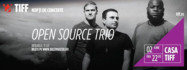 02 iunie TIFF 2015: Concert Open Source Trio