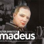 7 noiembrie Amadeus