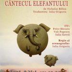 Oferim o invitatie dubla la spectacolul Cantecul elefantului