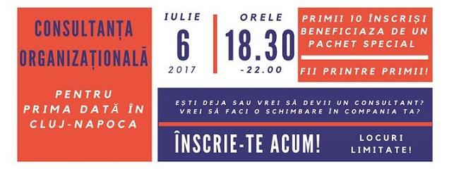 6 iulie Consultanța organizațională