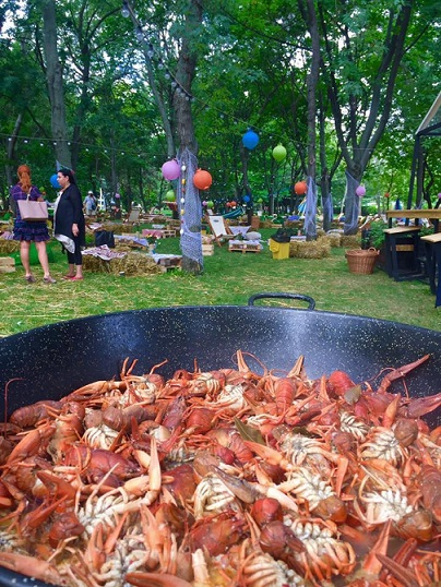 25 aprilie-1 mai The 1st Biggest Seafood Picnic Barbeque
