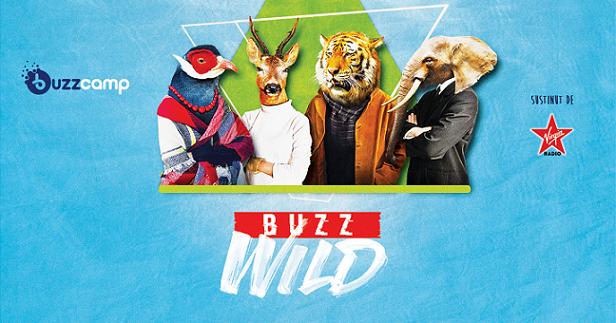 BuzzCamp revine în orașul tău cu multe oportunități
