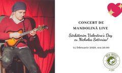 Concert de mandolină