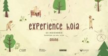 Experience Hoia
