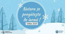 Natura se pregătește de iarnă