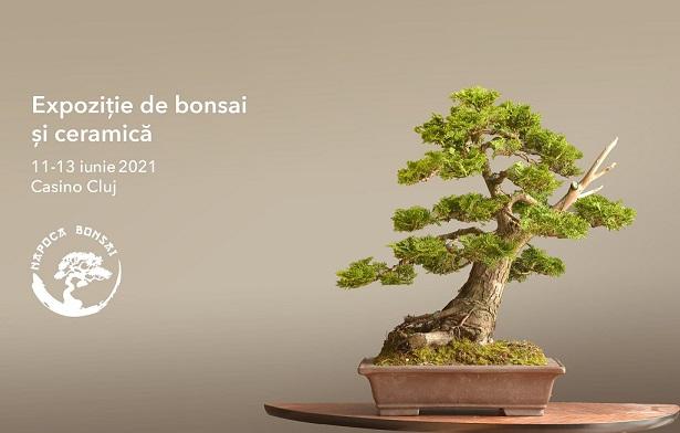 Expoziție de bonsai si ceramică