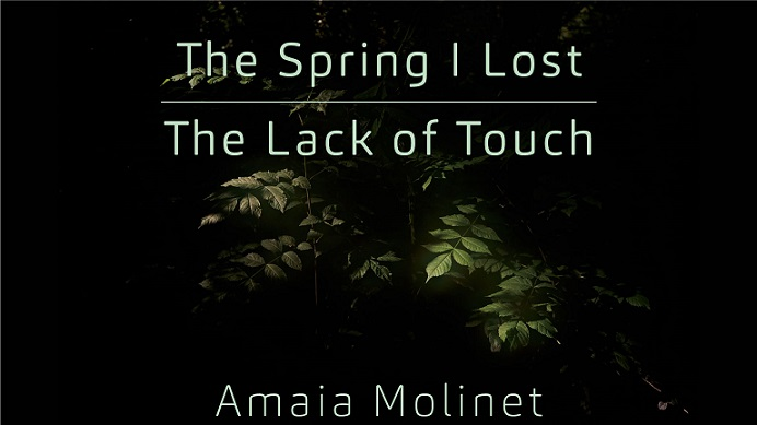The Spring I Lost